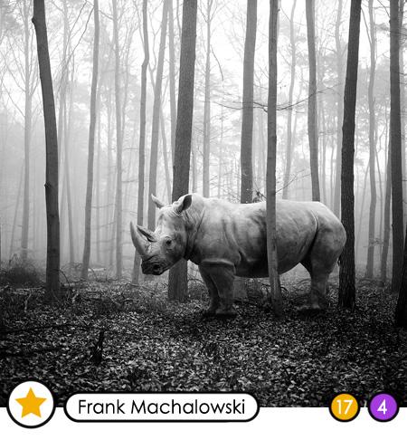 FRANK MACHALOWSKI - Die CAZALE-Editionen!