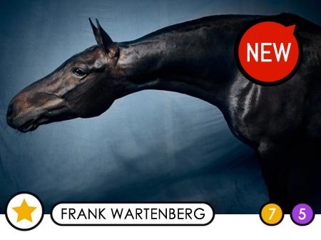 FRANK WARTENBERG - Die CAZALE-Editionen POLO HORSES!