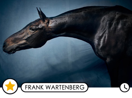 Frank Wartenberg (coming soon)