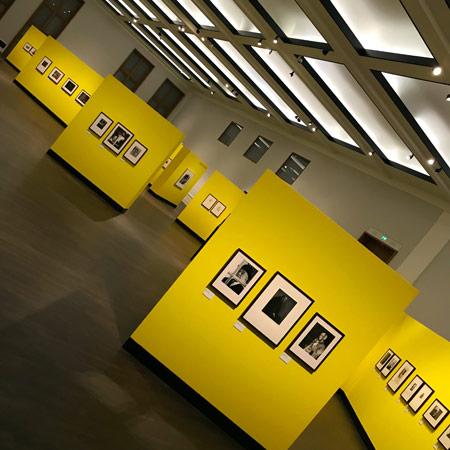Niki de Saint Phalle von Peter Brüchmann